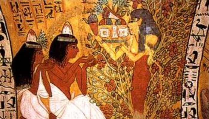 Mormon Ancient Egypt Temples Tree Goddess