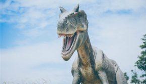 LDS Dinosaurs