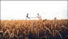 two men in wheat field Mormon