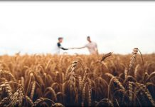 two men in wheat field Mormon