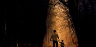 Parenting holding child's hand in forest
