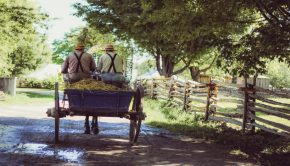 Amish men on waggon