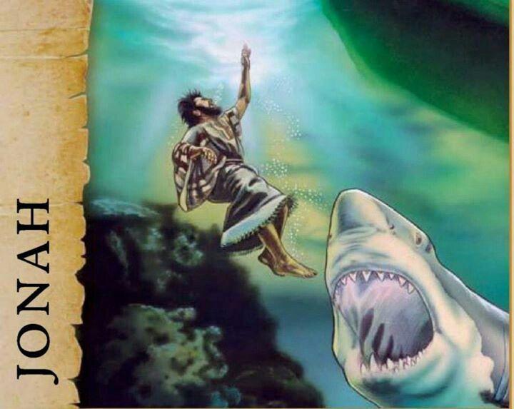 Jonah and Shark