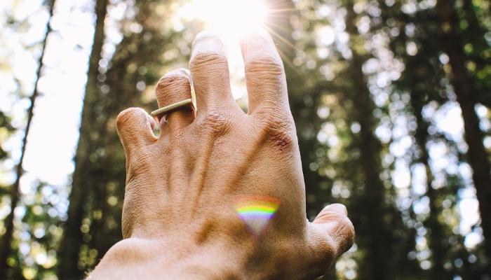 Hand reaching for sunlight.