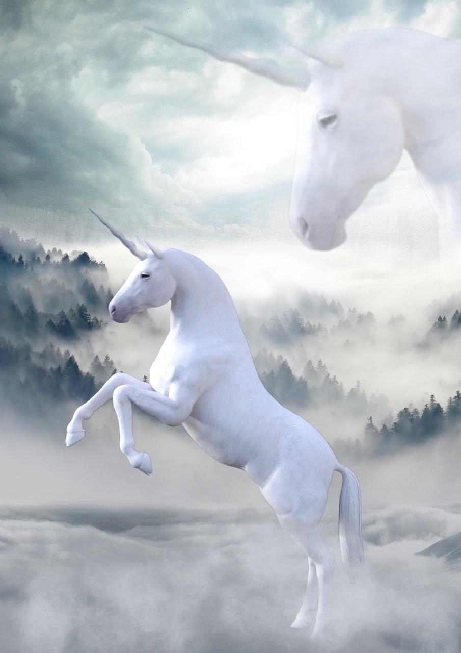 unicorn magic fairytale