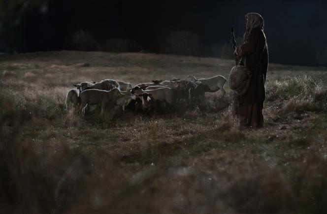 Shepherds in the field lds