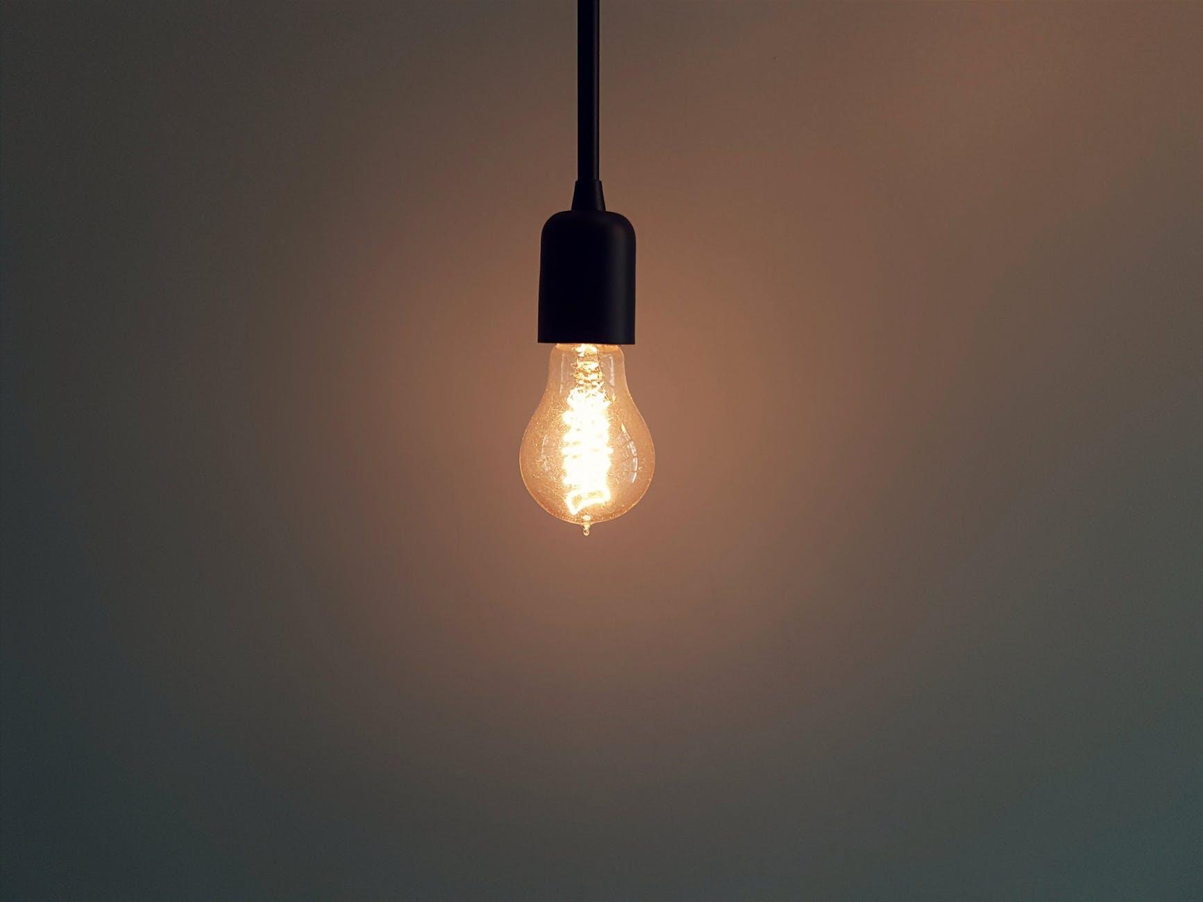 lightbulb light wisdom