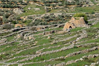 ancient watchtower