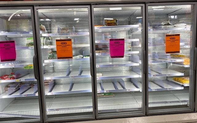empty frozen food shelves