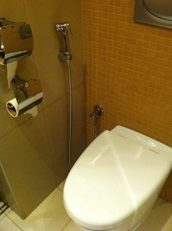 Asian toilet with sprayer