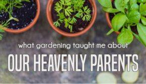 what gardening taught me about our heavenly parents