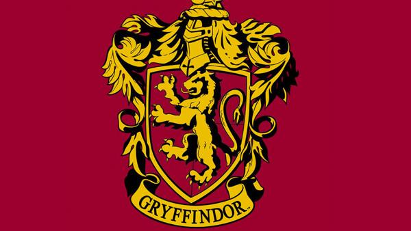 the gryffindor symbol banner hogwarts house