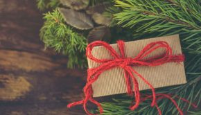 diy christmas present wrapped next to pine leaves with red bow