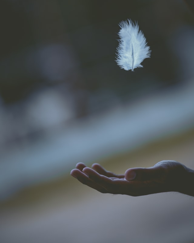 hand catching a feather