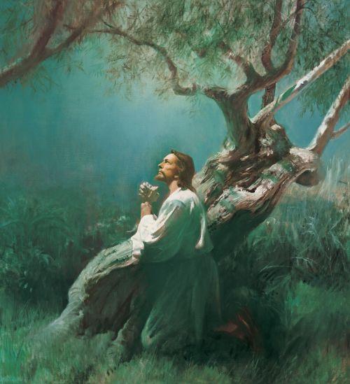 Jesus Christ praying in the Garden of Gethsemane during His atoning sacrifice for us.